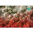 Blütenbüschel Sommer (1:45)