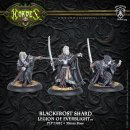 Legion Blackfrost Shard Character Unit (3) Blister