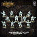 Retribution Unit Dawnguard Invictors Box (plastic)