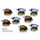 Wild Pigs (8)