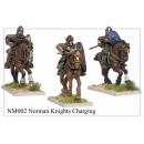 Norman Knights Charging (6)