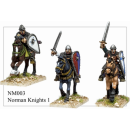Norman Knights I (6)