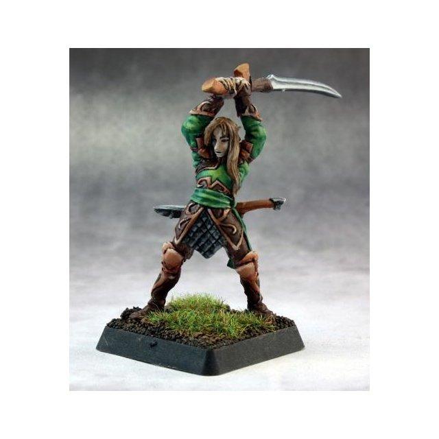 Vale Swordsman