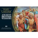 Ancient British Warriors