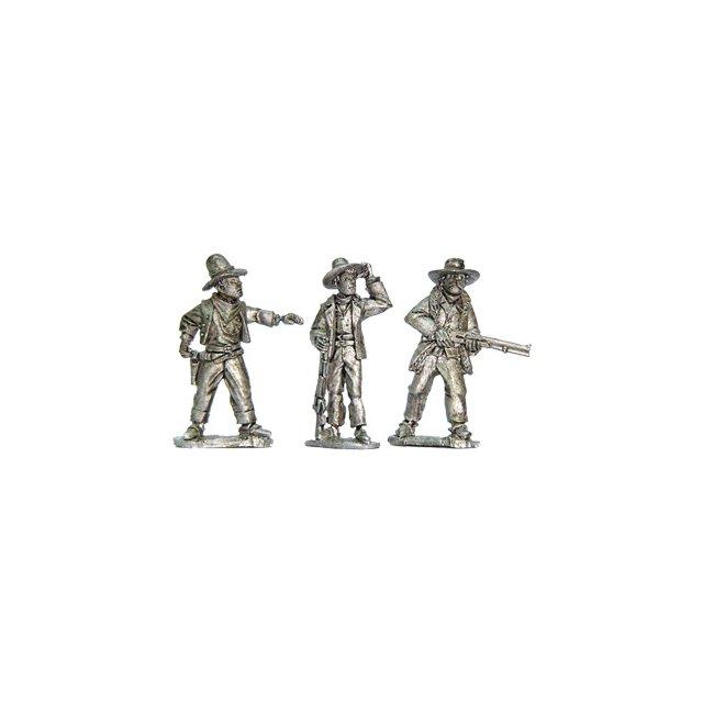 Cowboy Posse I