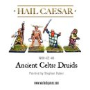 Ancient Celts: Druids