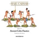 Ancient Celts: Fanatic pack
