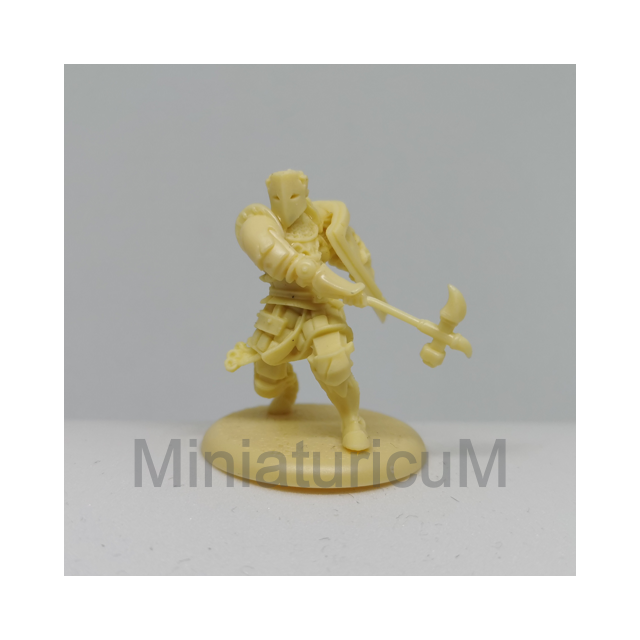 Baratheon Warden - Figur 1