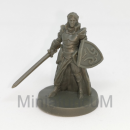 Fantasy Series 1: Male Elf Paladin