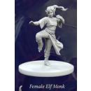 Fantasy Series 1: Female Elf Monk