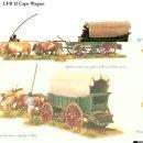 Cape wagon
