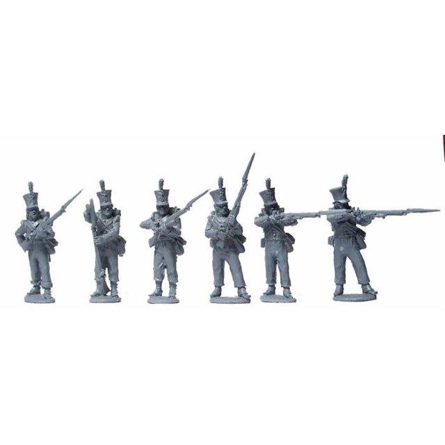 Dutch Line Infantry firing line , flank companies