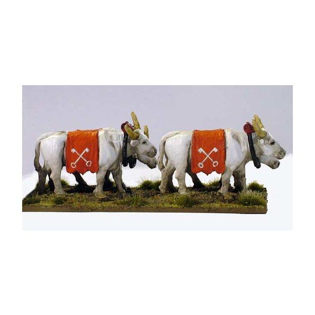 Carroccio Oxen