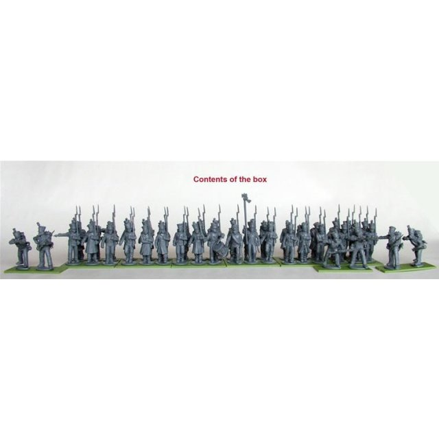 French Napoleonic Infantry