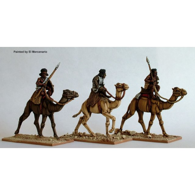 Mounted Beja on camels with spears and sword