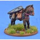SSC17 Pack Pony (Kite Shield) (1)